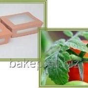 Салатник Салат 600 термо фото