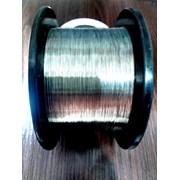 Проволока нихромовая Х20Н80 0.16 мм фото