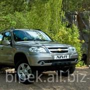 Внедорожники Chevrolet Niva фото