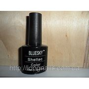 BLUESKY Shellac Color палитра №9