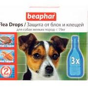 Flea Drops for Small Dogs фото