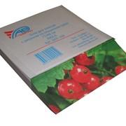 Блок для записей с рисунком на скошенном срезе БКР-100 (77*98мм, 100л) фото