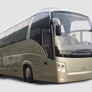 Автобус междугородний МАЗ-251 фото