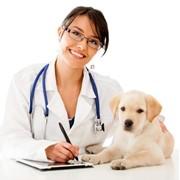 Регистрация лекарственных средств, перерегистрация фото