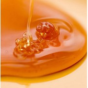 Мёд пчелиный, пчелиный мёд фото