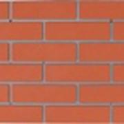 Фасадная панель стеновая Кремлевка фото