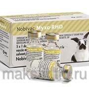 Вакцина Нобивак Myxo RHD 5x1доза + 5х1 мл р-ль фото