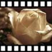 Изготовление видео рекламы фото