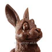 Шоколадные фигурки RABBIX, 10*36 20гр фото