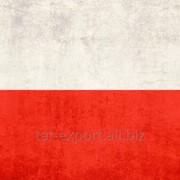 Экспорт из России в Польшу