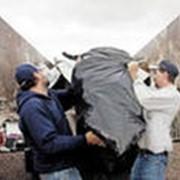 Уборка мусора фото