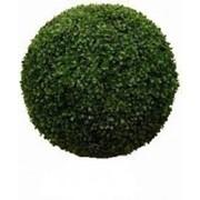 Самшит шар искусственный уличный, d 80 см фото