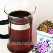 Чай из кипрея фото