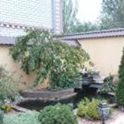 Ландшафтный дизайн сада Херсон, Украина фото
