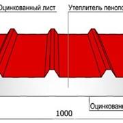 Кровельные сэндвич-панели Trimoterm SNV фото