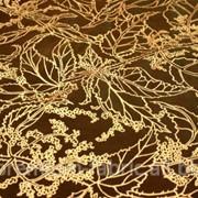 Ткань тафта 2 фото