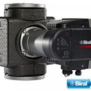 BIRAL ModulA 50-6 240 RED, высокоефективнный циркуляционный насос фото