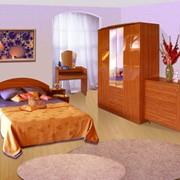 Набор мебели для спальни Соня-7 фото