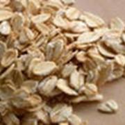 Хлопья пшеничные быстрого приготовления фото