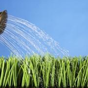 Биопрепараты для защиты растений от засухи и жары