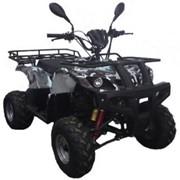 Квадроцикл ABM ATV 150 Apache фото