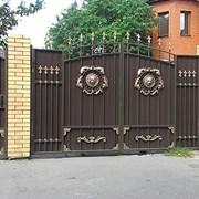Художественная ковка ворота и калитки. фото