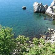 Жильё, досуг на Черном море фото