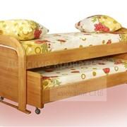 Детская выкатная кровать Мурзилка фото