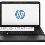Ноутбук NB HP 255, H6E07EA E2-2000/4Gb, опт фото
