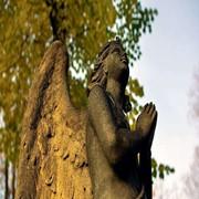 Благоустройство захоронений (Вилейка, Молодечно, Мядель, Нарочь) фото