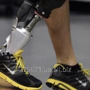 Медицинские макеты образцы исскусственных ног и рук для инвалидов фото