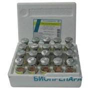 Вакцина против инфекционной бурсальной болезни Из штамма «Винтерфилд 2512»