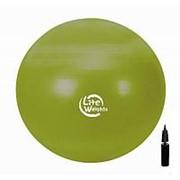 Мяч гимнастический Lite Weights 1866LW 65 см фото