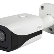 RVi-IPC43 (2.7-12 мм) фото