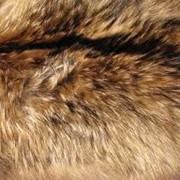 Натуральный мех енота. Оптовые цены фото