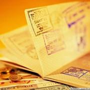 Оформление приглашений для иностранцев фото