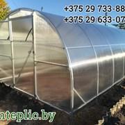 Теплицы и парники из сотового поликарбоната 3х10 м. Оцинкованный металл. Металл - 1 мм. фото