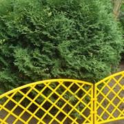 Декоративный забор фото