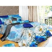Комплект постельного белья Silk Place ILLINOIS фото