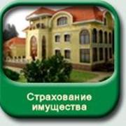 фото предложения ID 4574823