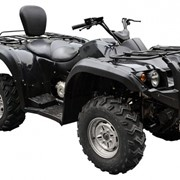 Квадроцикл Stels ATV 800 GT фото