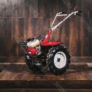 Культиватор Shtenli (Штенли) 1030, 8,5 л.с., колеса 6,5х12 с фарой и дифференциалами фото