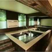 Бани, сауны.Банные комплексы.Японская баня. фото