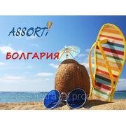 Bingoooo! курорт Константин и Елена!! - 345 евро! all premium! фотография