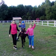 Для детей. Акция на пони ферме каждую субботу. фотография
