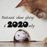 Готовимся к Новому году! фотография