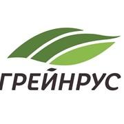 «Грейнрус» приобрела теплицы АПК Курской АЭС фотография