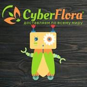 Cyber Flora поможет поздравить бизнес-партнёров фотография