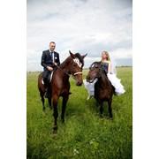 Славянская свадьба в «Дубках»! фотография