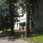 Открыт новый хостел! фотография